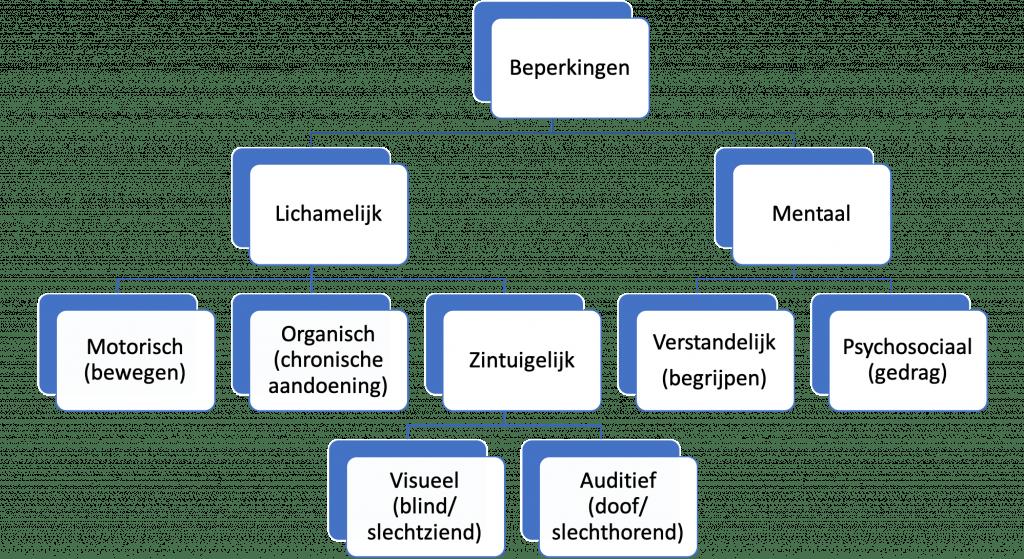 uitleg van de verschillende soorten beperkingen staan in de tekst