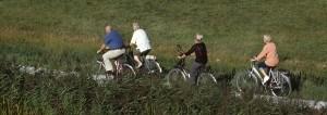 4 ouderen aan het fietsen