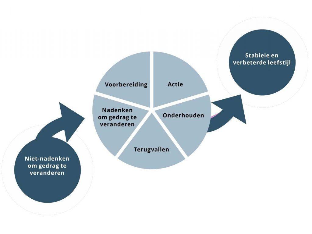 een model waarin de stappen voor gedragsverandering worden weergegeven