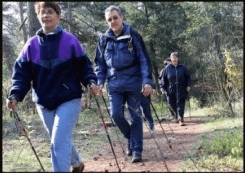 Een groep wandelaars aan het nordic walken in het bos