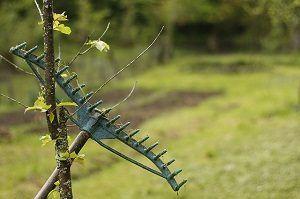 een hark tegen een boompje