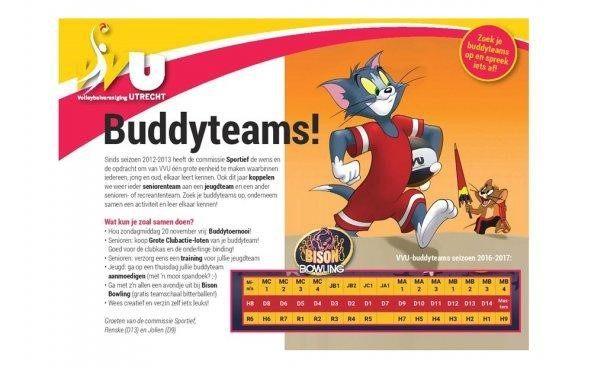 schermafbeelding van een websitepagina over buddyteams