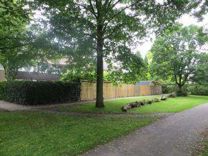 van een straat met gras en bomen en schuttingen
