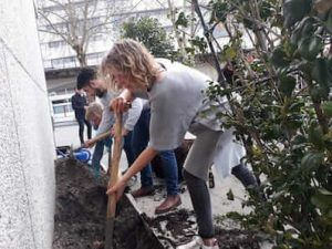 groep mensen planten geveltuintjes