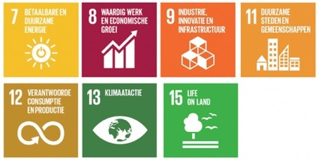 De Sustainable Development Goals uit dit artikel