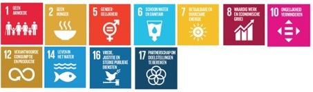 De overige Sustainable Development Goals